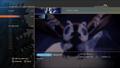 English PS4 Evolution Screen