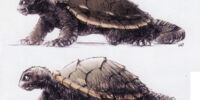 Gamera: The Brave/Gallery