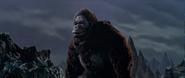 King Kong vs. Godzilla - 25 - Derp