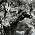 Godzilla.jp - 10 - SoshingekiAngira Anguirus 1969