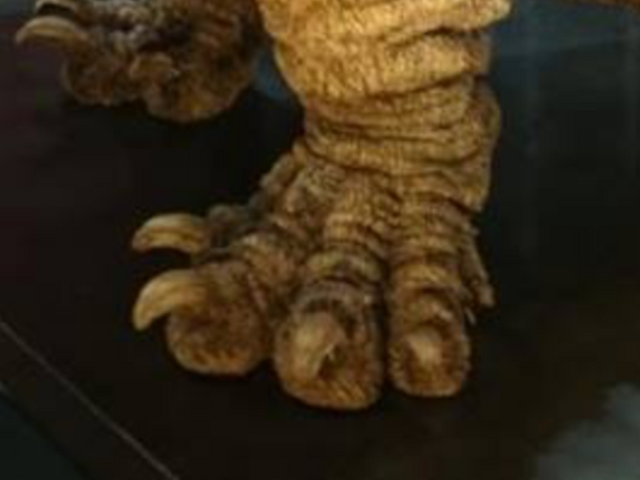 File:Shingoji feet.png