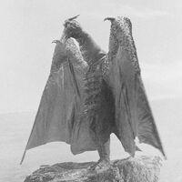 Godzilla.jp - 5 - SanDaikaijuRado Rodan 1964