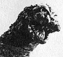 File:Godzilla 1964.jpg