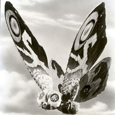 File:Godzilla.jp - 7 - NankaiMosuImago Mothra 1966.jpg