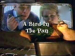 A Bird In The Pan
