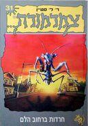 A Shocker on Shock Street - Hebrew Cover