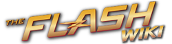 FlashWikiWordmark