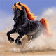 Oberyn's Stallion