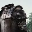 Mountain Armor