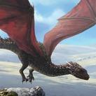 Adolescent Red Dragon