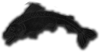 Tully Carved Fish