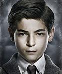 Gotham Bruce-Wayne-Portal 03.png