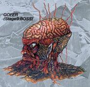 GoferGradius2PCE