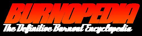 Burnopedia Gradient Logo White Subtitle