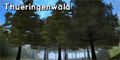 Thueringenwald.png