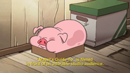 Short11 Waddles sleeping