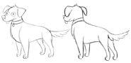 S1e8 northwest dog