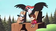 S1e11 woodpecker