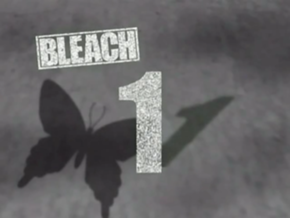 File:Bleach 1.png