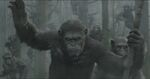 Caesar-dawn-of-the-planet-of-the-apes