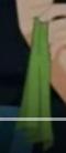 Green Damsel Gag