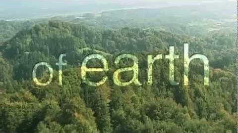 YES Your Earth Share