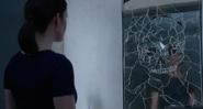 519-Cracked mirror skull