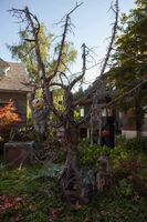 209-Monroe House-Halloween7