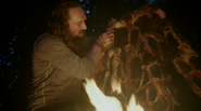 312 Woden's cloak of hair