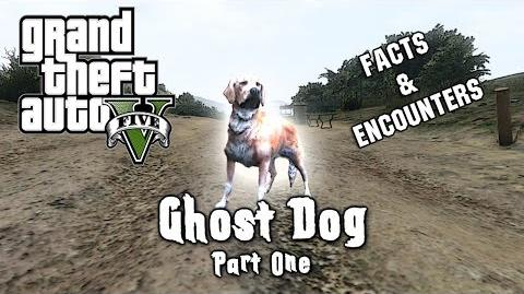 GTA 5 - MYTH Ghost Dog (PART ONE) - Facts And Encounters