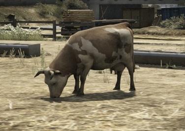 File:Cow-GTAV-idle.jpg