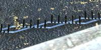 Spike Strip
