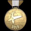File:GTA V Stunt Plane Gold.png