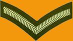 File:Lance Corporal.jpg