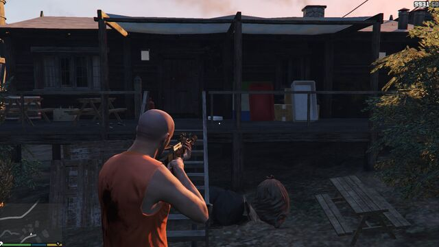 File:AltruistCamp-GTAV-Briefcase-2.jpg