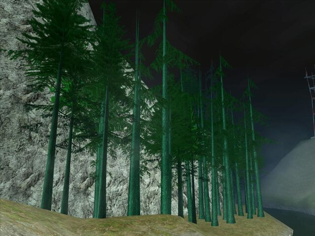 File:Trees .jpg
