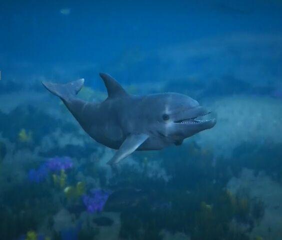 File:Dolphin-GTA-PS4.jpg