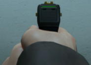 Stun Gun sights GTA V