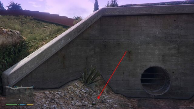 File:Peyote Plants GTAVe 17 Vinewood Hills Drain View.jpg
