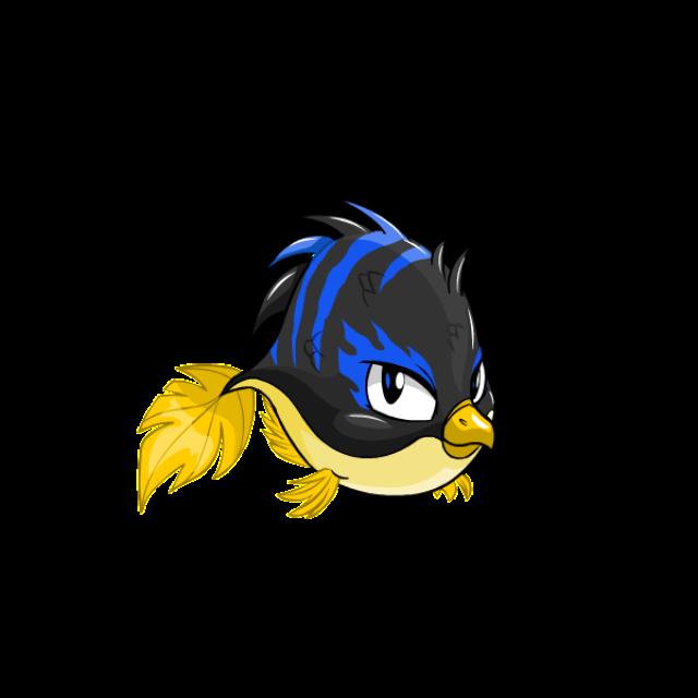 Maraquan pteri