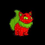 Strawberry Wocky