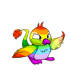 Pteri rainbow