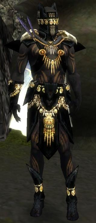 Guild Wars  Ritualist Build