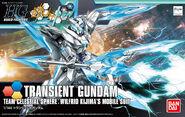 Hg Transient Gundam