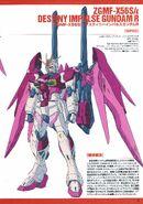 Destiny Impulse R 01