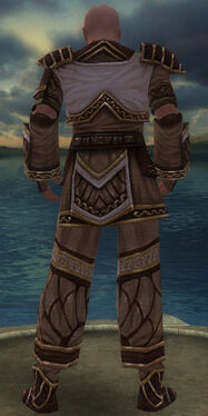 Monk Elite Canthan Armor M gray back