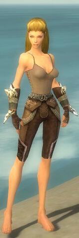 File:Ranger Asuran Armor F gray arms legs front.jpg
