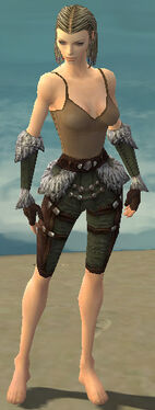 Ranger Elite Fur-Lined Armor F gray arms legs front