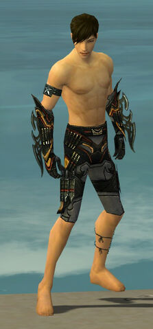 File:Assassin Elite Kurzick Armor M gray arms legs front.jpg