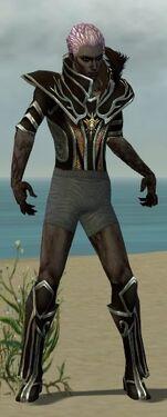 Necromancer Elite Sunspear Armor M gray chest feet front